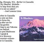 452. Richelle Selig, Olympia, WA - Berber in Cascadia