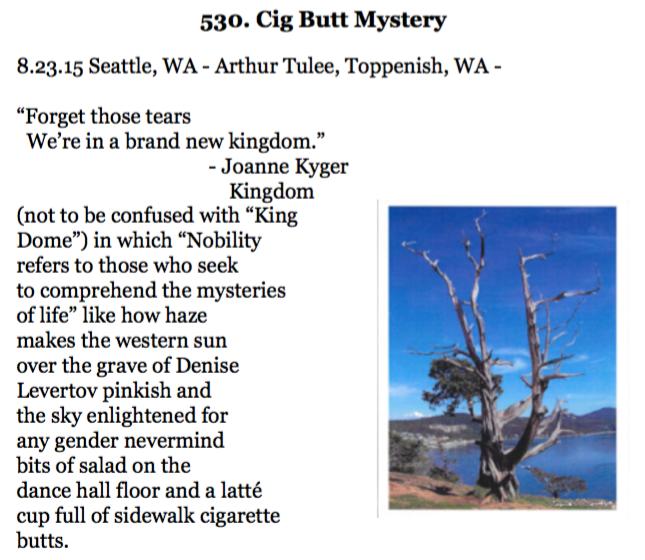 530. Cig Butt Mystery