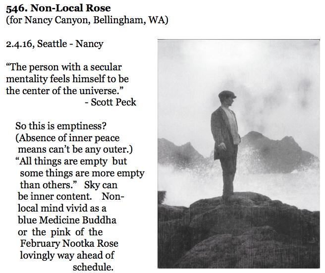 546. Non-Local Rose %0A