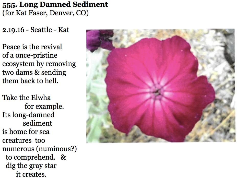 555. Long Damned Sediment